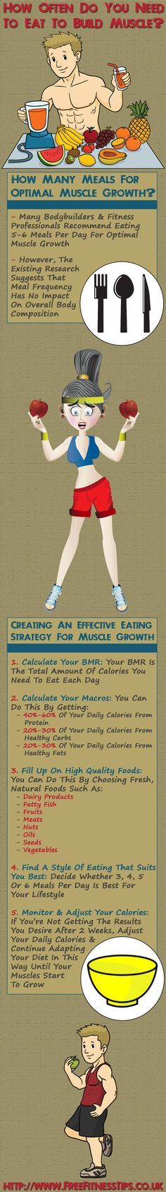 How Often Do You Need To Eat To Build Muscle? Infographic