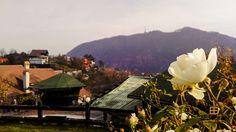 #exterior #autumn #garden #view #belvedererestaurant #outside #autumnbreeze #gorgeousview #brasov Opera House, Indoor, Exterior, Building, Pictures, Travel, Interior, Photos, Viajes