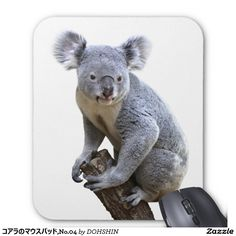 Mouse pad of koala, No.04