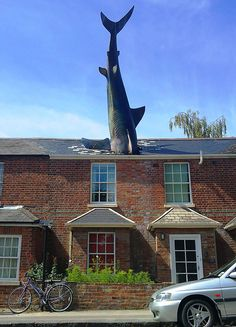 The Shark, Oxford, UK  If houses were built out in the middle of the ocean, perhaps some high-flying sharks would actually crash into roofs here and there. Or, you could just move to Oxford, UK where local radio presenter, Bill Heine, has lived with a giant shark crashing into the top of his roof since 1986.