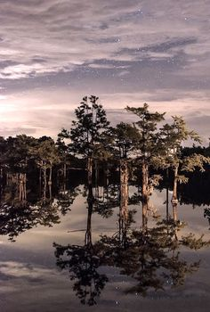 # nature #a reflection it looks calm for disturbance