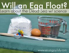 Dead Sea Experiment Great for Jesus walking on the water Sunday School Kids, Sunday School Lessons, Lessons For Kids, Preschool Science, Bible Science, Science Penguin, Kid Science, Science Chemistry, Physical Science
