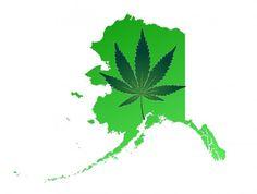 Alaska: Election Officials Postpone Marijuana Legalization Vote to November | Weedist