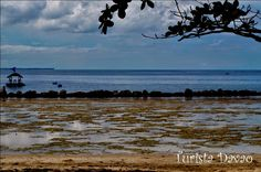 Low tide @ Bonhomie Leisure and Resort, Banay-banay, Davao Oriental