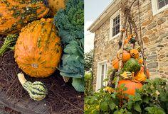 Feeling Fall on The BULLETIN at Terrain #pumpkins #gourds #obelisk