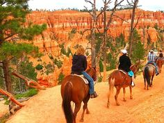 Bryce Canyon National Park, Garfield County, Utah — by Caz and Craig @yTravelBlog. We loved Bryce Canyon in Utah just as much as the Grand Canyon. A highlight was this horse ride we did on the...
