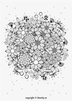 Kleurpboek Coloring page book - Målarbok för vuxna-013