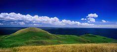 Panorama, Nature, Saint Laurent, Images, Mountains, Travel, Dolphins, Archipelago, Canadian Horse