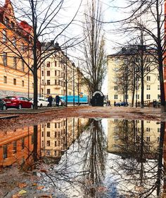 # . . . #dashablestories #dashable #sweden #stockholm