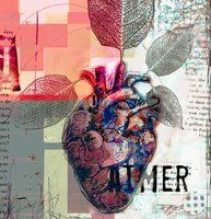 Aimer 2 by veroklotz