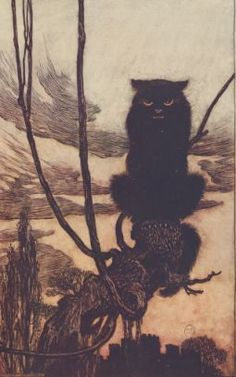The fairy tales of the brothers Grimm #gallica #rackham #tales #grimm #contes #cat #chat #black