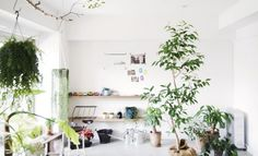 Living Space of Japanese modern home design with minimalist decor