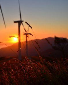 Diles que es invierno a principios de enero y a ver quién te cree..  . . #winter #Galicia #GaliciaMola #sunset