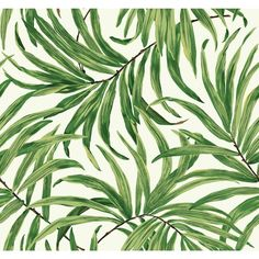 Ashford Tropics x Bali Leaves Wallpaper Leaves Wallpaper, Big Leaves, Tropical Leaves, Bali, Plant Leaves, Patterns, Nice, Green, Plants