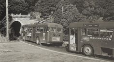 Queen Elizabeth Park, Wellington New Zealand, British Isles, What Is Like, Historical Photos, Buses, Old Photos, Past, Victoria