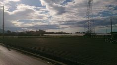 ●I campi di grano rettangolari●