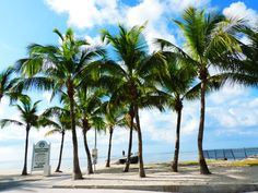 Key West, Florida | Best Scenic Drives In The US
