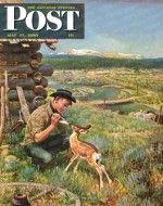 Feeding Fawn Near Flowering Field (John Clymer, May 27, 1950)