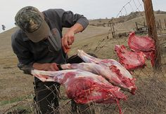 Five Wild Game Butchering And Cooking Tips