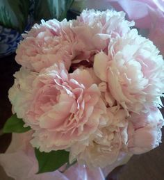 peony bouquet - Yahoo Search Results