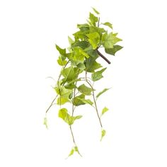 Hanging Green Ivy, 22'' Green Plants, Artificial Plants, Houseplants, Accent Decor, Ivy, Decoration, Herbs, Shelf, Book