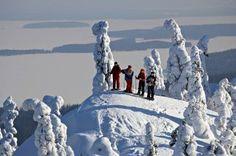 Koli Finlad Mount Everest, Norway, Sweden, National Parks, Wildlife, Mountains, Winter, Travel, Outdoor