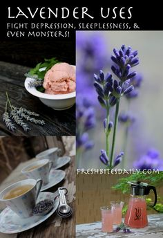 Are you fighting depression, sleeplessness, pain, skin irritation, or even monsters? Lavender's got your back....