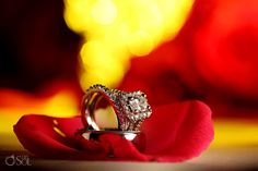 These gorgeous rings belong to the newlyweds from a destination wedding at @Xcaret Park in the Riviera Maya.  Mexico wedding photographers Del Sol Photography