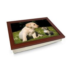 Labrador puppy and kitten cushioned lap tray Personalised Gifts Unique, Unique Gifts, Lap Tray, Laptop Desk, Breakfast In Bed, Design Your Own, Cleaning Wipes, Dogs And Puppies, Labrador