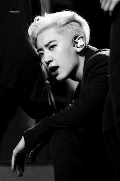 Exo Park chanyeol Chanyeol black and white Exo Chanyeol, Kpop Exo, Kyungsoo, Kim Min Seok, Xiu Min, Chen, Kai, Kim Jongdae, Exo Members