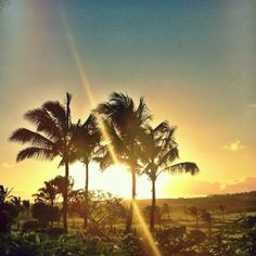 Happy #AlohaFriday Irators. Stay safe this weekend and we'll see you soon! http://showsnear.by/Iration