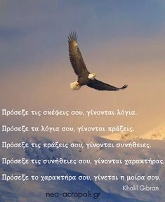 Greek Quotes, Bald Eagle, Words, Life, Horse