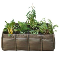 $128 Portable Planter...12-Inch Squares. Easier Than a DIY on My Patio?