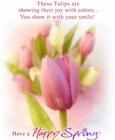 Image result for these tulips are showing there joy with colors you show it with your smile