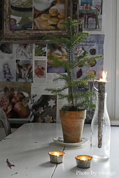 .WOW  great idea find a branch of an evergreen outside and decorate