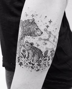 Micro Mama bear and cub in a starry night with Ursa Major, mushrooms, and forest floor ferns!  Thanks Courtenay! ✨✨