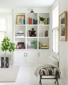 Jane Beiles Photography, Pimlico Interiors, Birch Designs   White Living  Room With Plant Accents, Bookshelves, And Storage