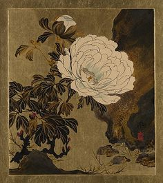 Lacquer Paintings of Various Subjects: Peonies Shibata Zeshin (Japanese, 1807–1891) Period: Meiji period (1868–1912) Date: 1882 Culture: Japan Medium: Lacquer and gold on paper