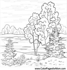 landscape coloring page 16 #colorpagesforadults #coloring