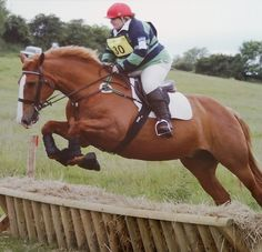 Emma Morrell with Chily Jumping in Fuller Fillies show pro breeches