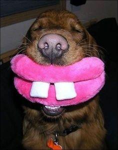 you love my lips?