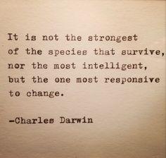 Charles Darwin Quote Typed on Typewriter by WhiteCellarDoor on Etsy https://www.etsy.com/listing/129486511/charles-darwin-quote-typed-on-typewriter