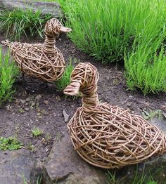Willow Duck Sculptures - With Character. Here we have a standing duck sculpture behind a nesting duck sculpture. This combination make an ideal pair of garden sculptures especially when placed alongside a pool or water feature