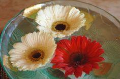 Thai house flowers - TEOMONTANA