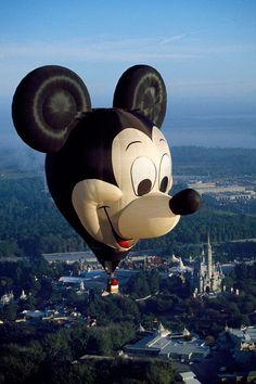.Mickey.            t