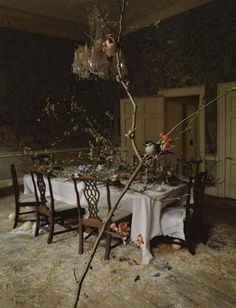 Tim Walker Soars With Bird Still Lifes In 'Come To Dinner' For Vogue Italia May 2015 - 3 Sensual Fashion Editorials   Art Exhibits - Women's Fashion & Lifestyle News From Anne of Carversville