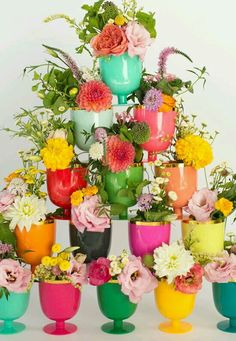Cute pots wd colourful beauties!