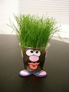 how cute is a make your own grass hair guy or gal? Fun twist to the plain ol' grow grass in a cup experi how cute is a make your own grass hair guy or gal? Fun twist to the plain ol' grow grass in a cup experiment :) Preschool Science, Science Activities, Preschool Activities, Science Fun, Science Ideas, Crafts For Kids, Arts And Crafts, Diy Crafts, Growing Grass