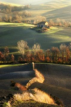 seasonsofwinterberry:  Autumn in Tuscany, province of Siena