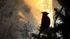 For Sale! http://fineartamerica.com/featured/sunrise-with-bird-in-tree-elisabeth-ann.html